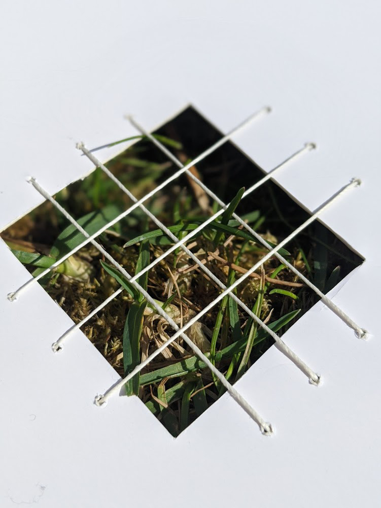 small frame made of paper with thin wires creating a grid across the frame.This structure has been placed on grass and grass is poking through the grid.